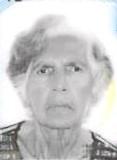 Cicilia M. Wernet
