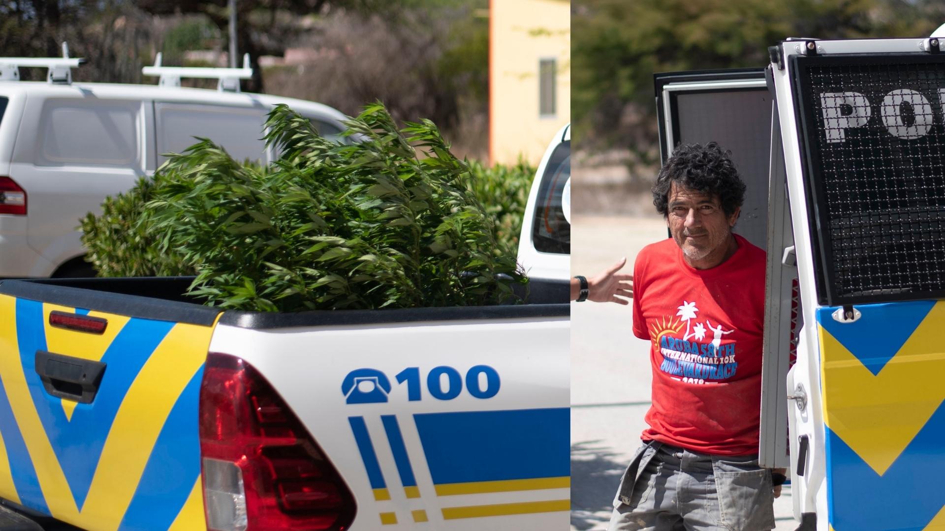 Deteni pa tin varios mata di marihuana